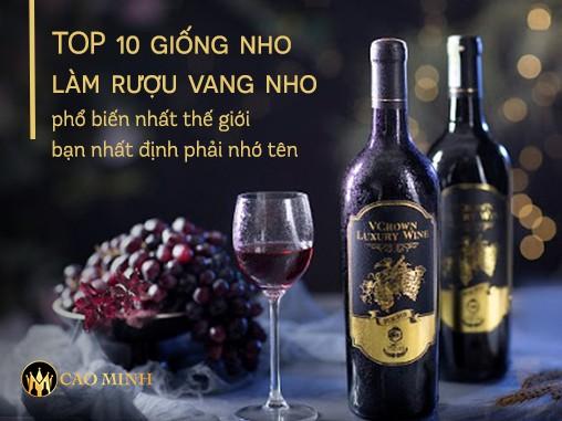 TOP 10 giống nho làm rượu vang nho phổ biến nhất thế giới bạn nhất định phải nhớ tên