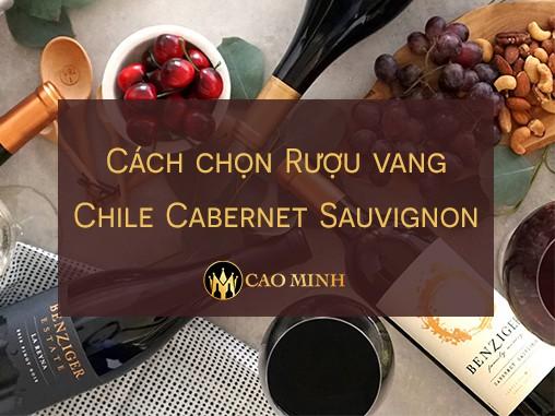 Cách chọn Rượu vang Chile Cabernet Sauvignon 2017
