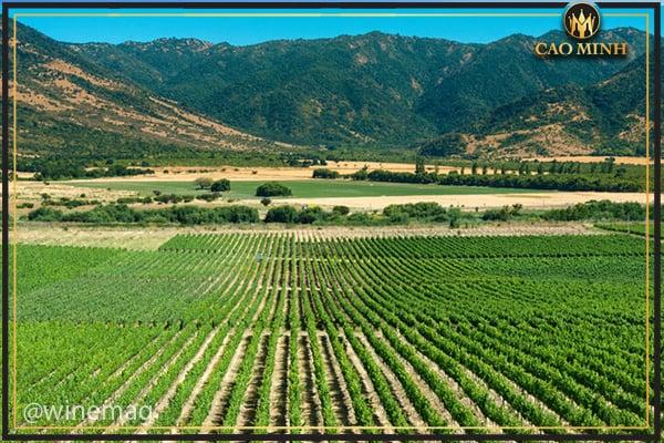 Phía Nam Chile
