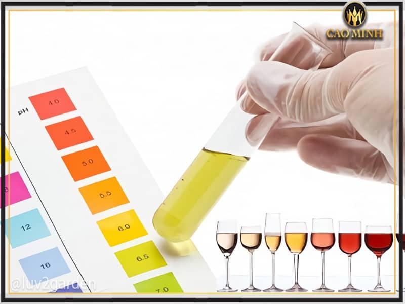 Chất Acid bên trong rượu