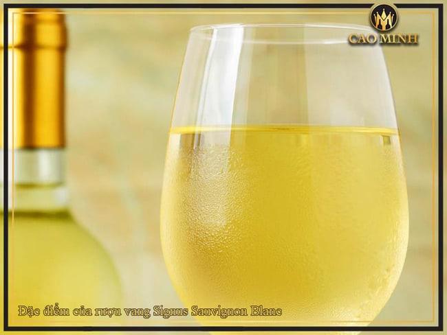 Đặc điểm của rượu vang Signus Sauvignon Blanc