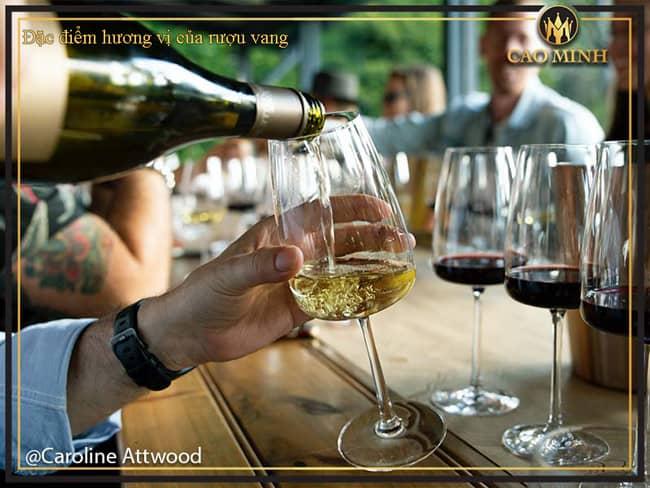 Đặc điểm hương vị của rượu vang