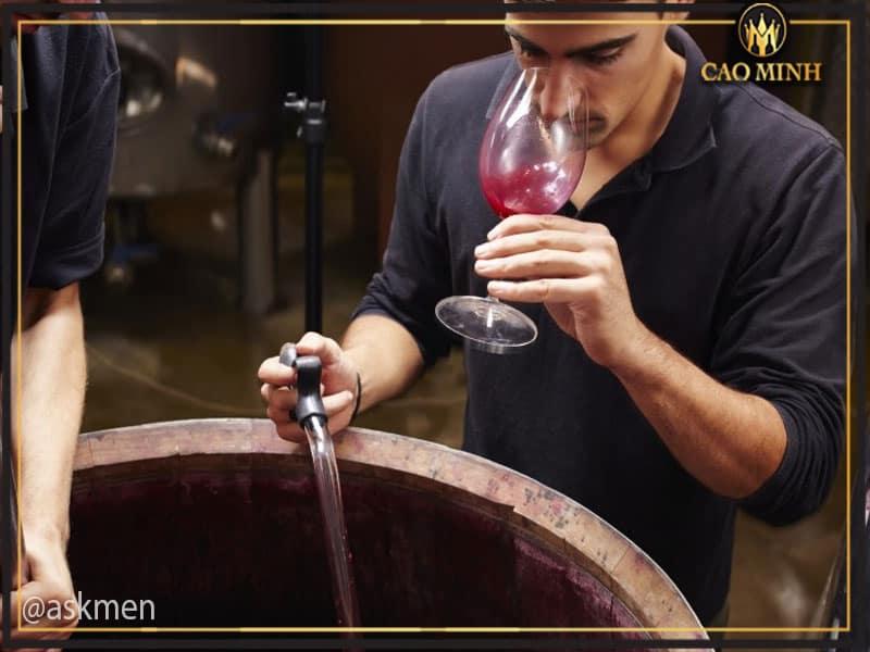 Quy trình sản xuất rượu vang Queulat