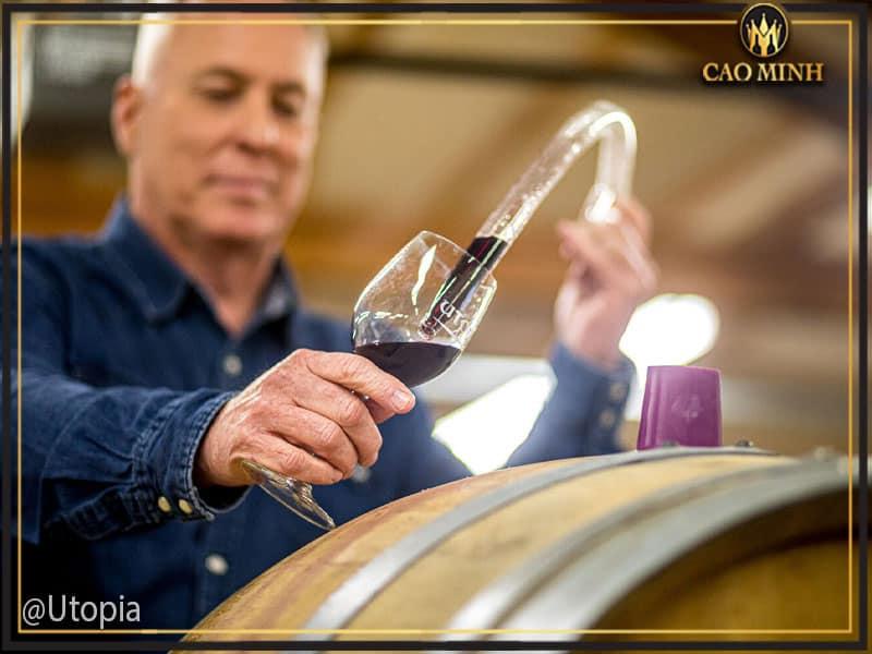Quy trình sản xuất rượu vang Uno 1 Primitivo