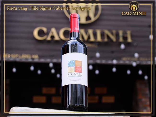 Rượu Vang Signus (Red, White) - Dòng Vang Chile Ngon Giá Hợp Lý