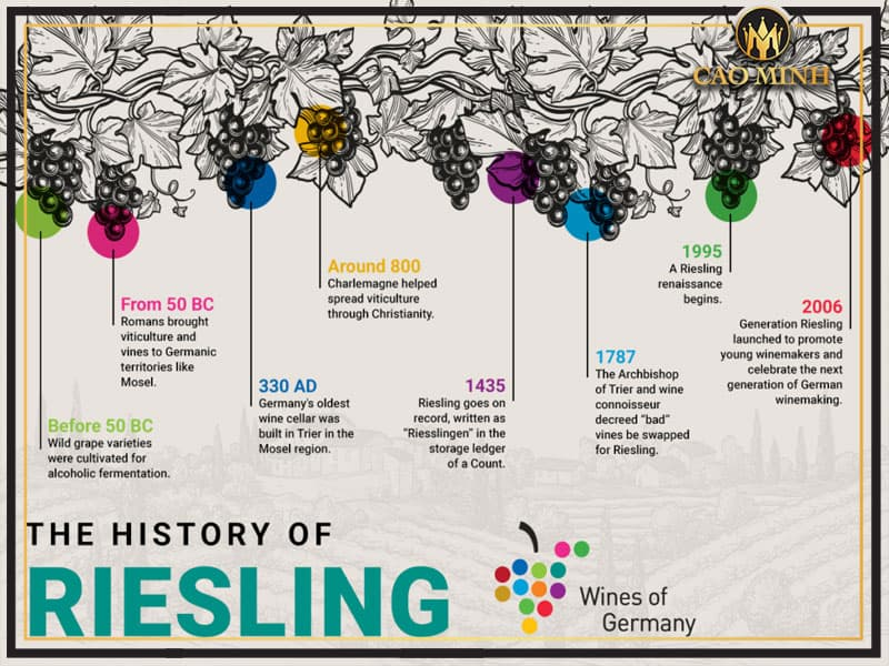 Về nguồn gốc nho Riesling
