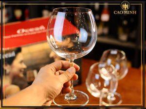 Ly rượu vang giá rẻ mua ở đâu, giá bao nhiêu?