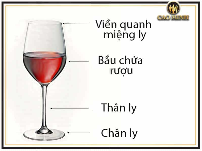Cấu tạo của ly uống rượu vang