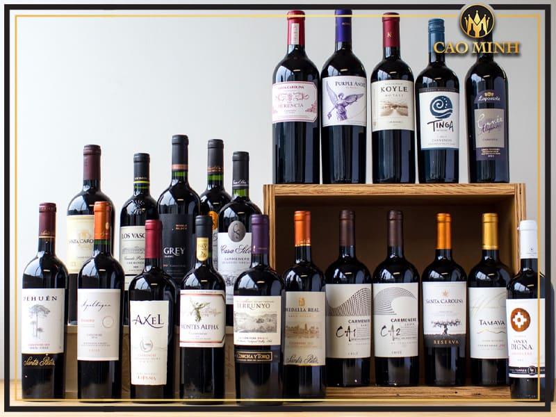 Rượu Vang Carmenere Chile