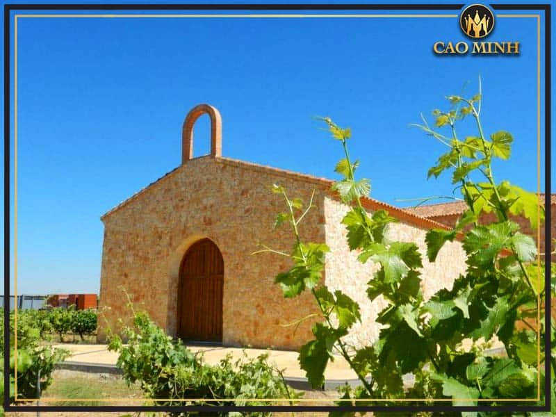 Toro DO (Castilla-La Mancha)