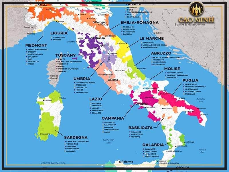 Rượu Vang Ý Và Những Kiến Thức Cơ Bản Nhất