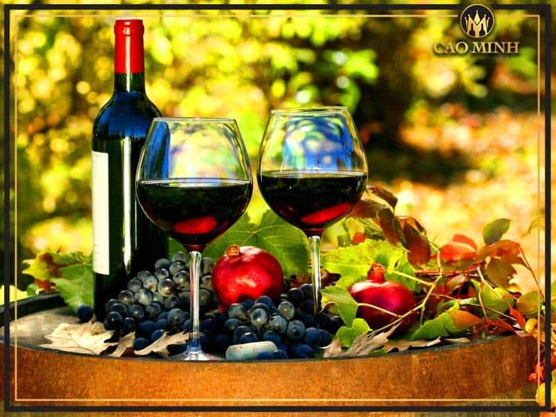 Địa chỉ mua rượu vang hoa quả uy tín