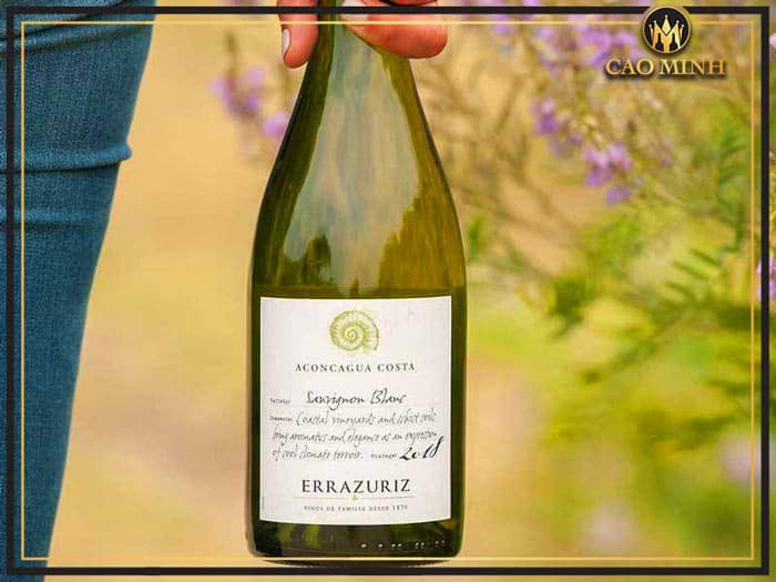 Rượu vang Errazuriz Aconcagua Costa Sauvignon Blanc