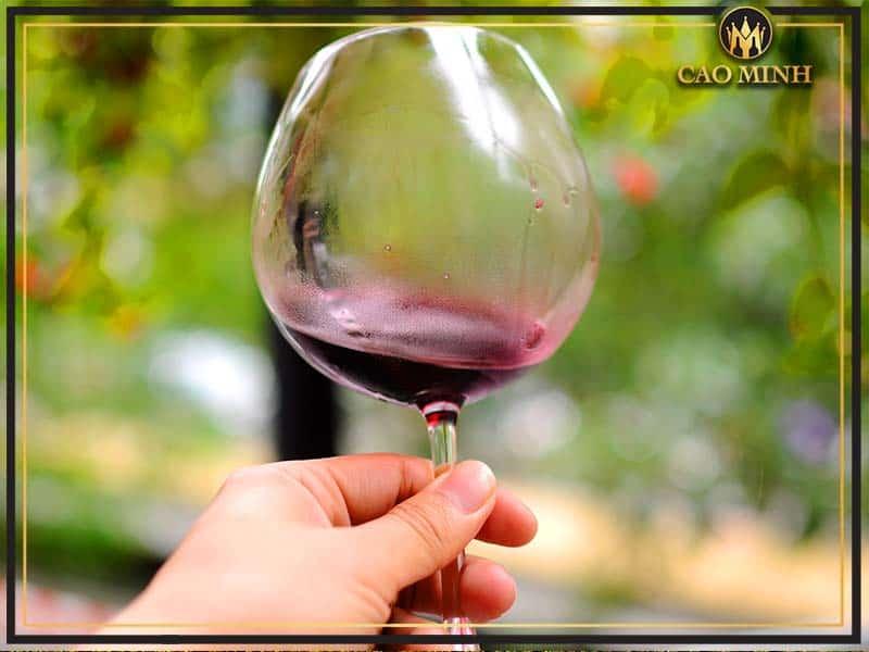 Thưởng thức rượu vang Max Cabernet Sauvignon