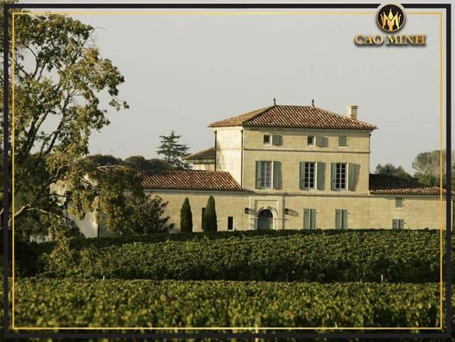 Vị trí đắc địa và thổ nhưỡng của nhà Chateau Petrus