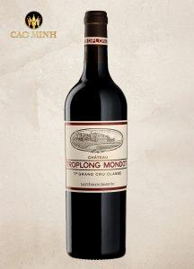Rượu Vang Pháp Château Troplong Mondot