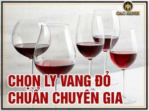 Cách chọn ly uống rượu vang đỏ đúng chuẩn chuyên gia