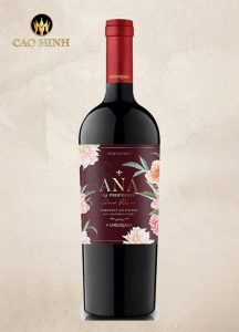 Rượu Vang Chile ANA La Propuesta Grand Reserve Cabernet Sauvignon