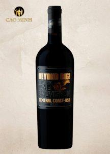 Rượu Vang Mỹ The One Cab Sauvignon